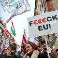 Jobbik: egyszerű politikusbűnözők?
