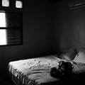 211. vers - Üres ágyban