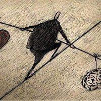 8. vers - Szív és agy