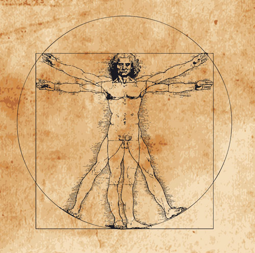 fibonacci-davinco.jpg