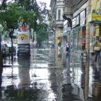 Június 8. - Csoóri Sándor: Medárdi eső