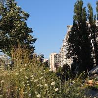 Augusztus 6. - Ady Endre: A föl-föl dobott kő