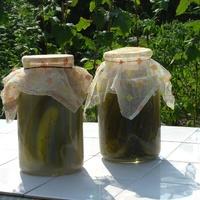 Augusztus 28. - Konstanty Ildefons Galczynsky: Miért nem dalol az uborka?