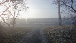 Január 19. - Orbán Ottó: A dán királyi főszámvevő jelentése a Fortinbras & Fortinbras cég átvilágításáról