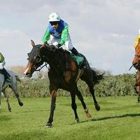 A lovak és a lányok is jól vannak
