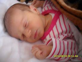 luca_baba_1391780646.jpg_274x206