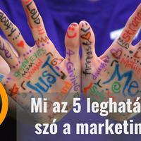 Az 5 leghatásosabb szó a marketingben…
