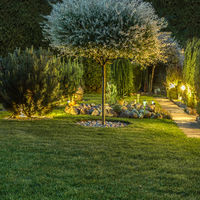 Íme 3 eszköz, amivel a kert is okosabb lesz