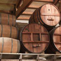 Fritz borászat és pince: ahol a hagyomány és a modernitás találkozik