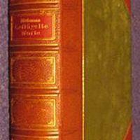 Az újdonság törvénye, vagy a félig olvasott könyvek meséje