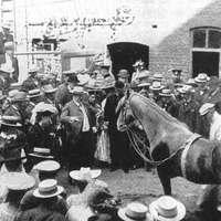 Kluge Hans, az okos ló esete a kommunikációval