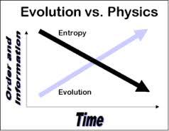 Entropy 2.jpg