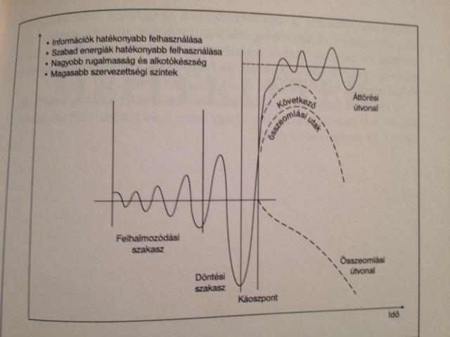 Laszlo diagram.jpg