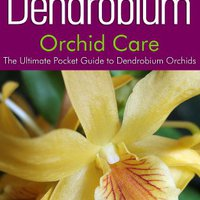 ``ZIP`` Dendrobium Orchid Care: The Ultimate Pocket Guide To Dendrobium Orchids. college varios Codes Force pasando basic