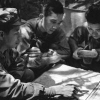 A Vietnami Néphadsereg 5.