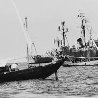 Dzsunkák, őrhajók és vízi sárkányok