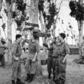 ANZAC-katonák Vietnamban 5.
