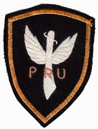 pru_patch.jpg