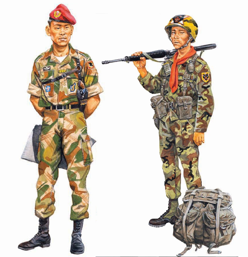 Balra egy légideszantos százados 1966-ból. Vörös barettet és francia szabású ejtőernyős gyakorlót visel, amelynek álcamintája a francia, előtte a brit légideszant sajátja volt. Jobb mellzsebén az 5. légideszant-zászlóalj jelvénye, míg bal vállán a légideszant-hadosztály felvarrója. Aranysárga rendfokozati jelzése a gombolás mentén látható. Fegyvere egy 38-as kaliberű Colt Detective Special. Balra egy ranger törzsőrmester. Az amerikai ERDL-minta alapján készült vietnámi terepszínt viseli. A rangerek jelvénye mind bal vállán, mind élénk terepszínűre festett sisakján látható. Nyakában az alakulatára jellemző vörös kendő. Amerikai M1956 szerelvényt és dzsungelbakancsot visel, lábánál egy VKH-hátizsák, vállán M-16A1 gépkarabély.