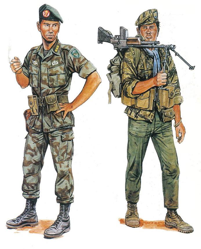 Két katona a különleges rendeltetésű alakulatoktól. Balra a vietnámi Különleges Erők századosa 1970-ből. Francia mintára viselt sötétzöld barettjén hímzett LLDB-sapkarózsát visel, vállán kivehető a tigrist, villámokat és ejtőernyőt ábrázoló, pajzs alakú felvarró, mellkasán pedig a vietnámi és az amerikai ejtőernyős szárnyak (engedélyezett volt ugyanis szövetségesük ugrójelvényének hordása). Egyenruhája az amerikai dzsungelgyakorló mintájára készült, de a jellegzetes vietnámi deszantos álcamintás anyagból. A jobbra látható alak az 5. csapásmérő különítmény katonája 1967-ből. Tigriscsíkos barettet visel a csapásmérők sapkarózsájával (egyik sem volt gyakori). Ruházata kevert, bakancsa a francia jellegű Bata bokacsizma. M1918A2 Browing automata puskát visel az ehhez való tártokokkal és második világháborús szerelékkel.