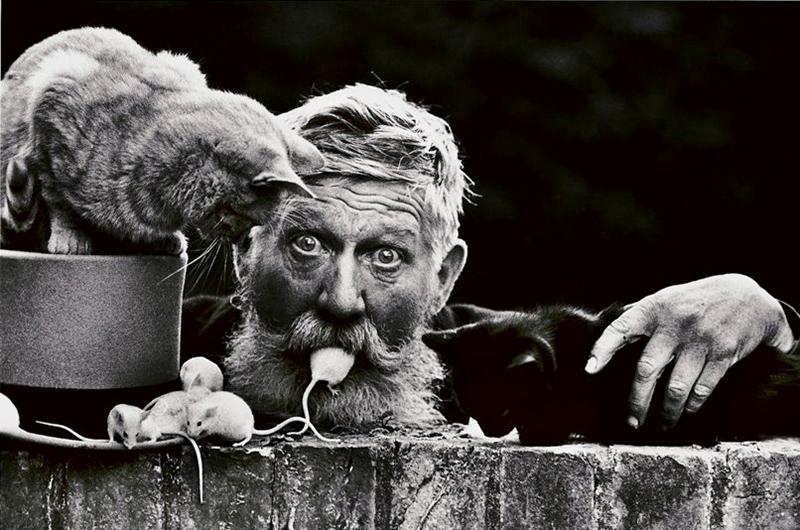 Londoni hajléktalan macskákkal