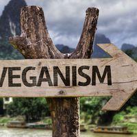A vegánok mentik meg a Földet?