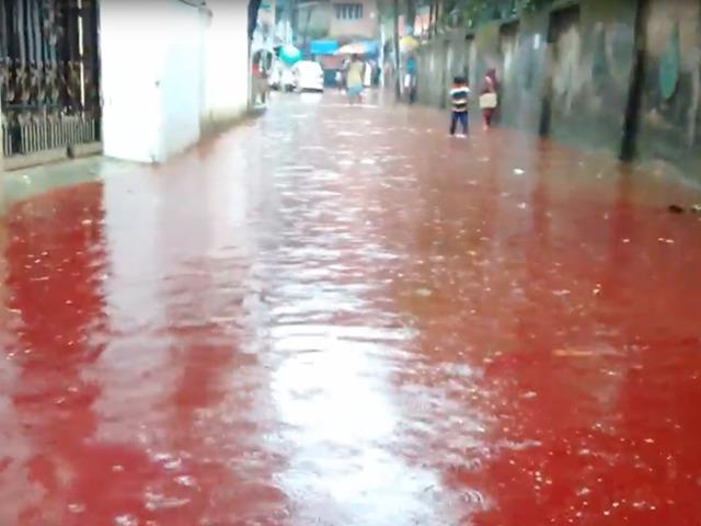 Vérfolyamok Dakkában