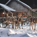 10+4 karácsonyi reklám a nagyvilágból