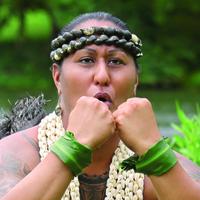 Az ősi hawaii kultúra tanítása a nemi identitásról