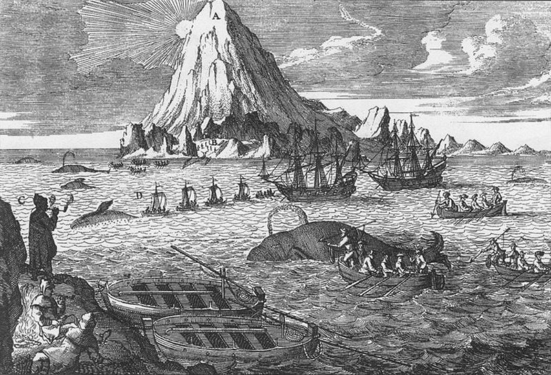 800px-18th_century_arctic_whaling.jpg