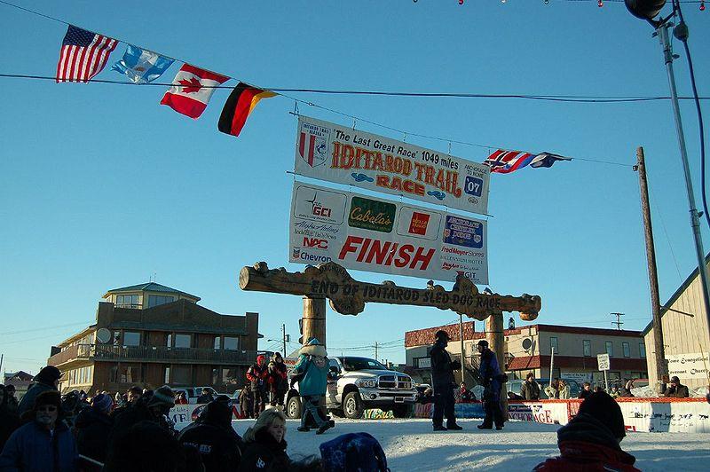 A nagy szérumfutás emlékére 1973 óta minden évben megrendezésre kerül - immáron békésebb és nyugodtabb körülmények között - az Iditarod szánhúzó verseny, amelyre a világ minden tájáról érkeznek versenyzők. (forrás: Wikipedia)