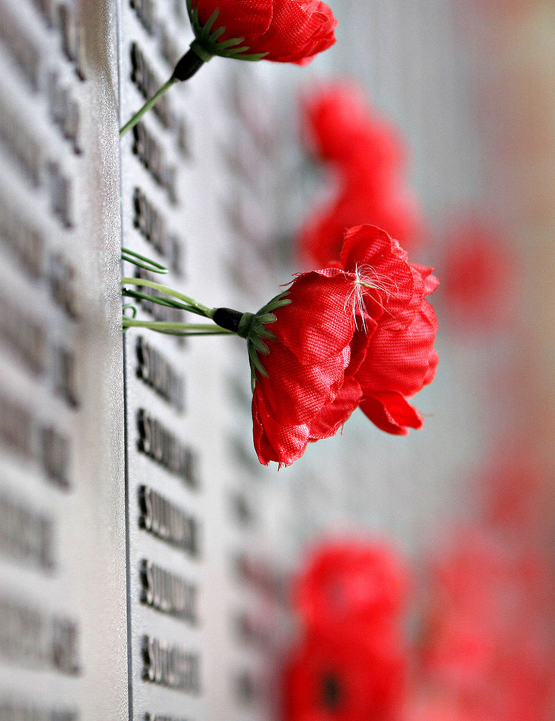 800px-remebrance_poppy_ww2_section_of_aust_war_memorial.jpg