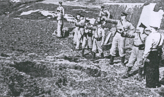 icelandic_army_1940.png