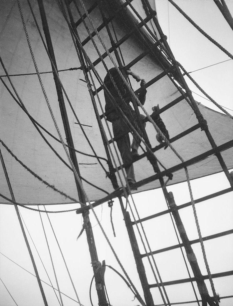 pommern_seaman_enticing_the_ship_s_cat_u