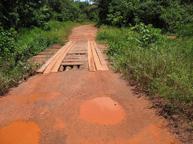 primary_road_between_paramaribo_and_brownsweg.JPG