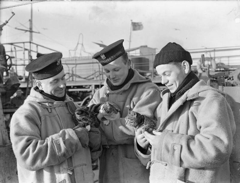 the_polish_navy_during_the_second_world_war_a2514.jpg