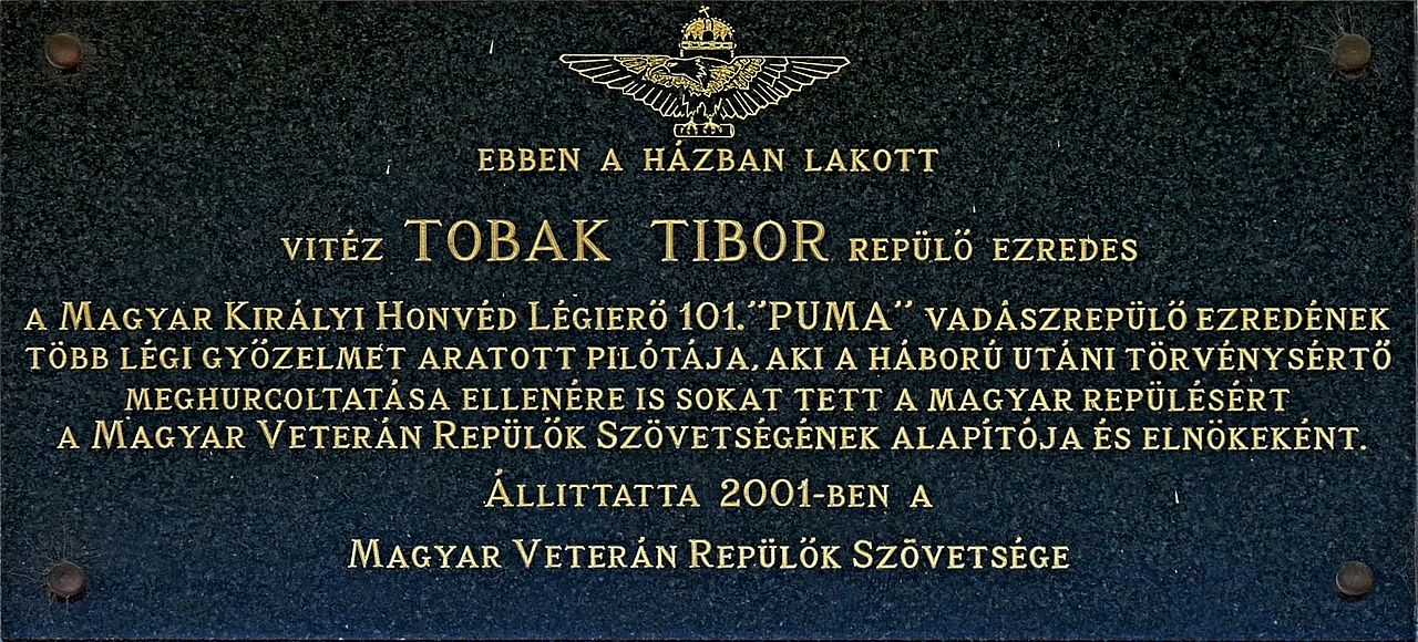 tibor_tobak_plaque_bp03_szolo80.jpg