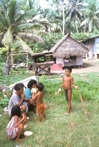 Palau számára a legfontosabb bevételi forrás az idegenforgalom, ennek ellenére még sokan folytatnak hagyományos (egyszerűbb) életmódot - nekik a halászat biztosítja a megélhetést. (forrás: Wikipedia)