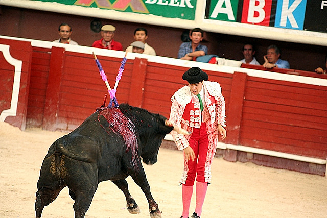 toreador_bullfight_plaza_de_toros_cancun_mexico_2_102_1077548273.jpg