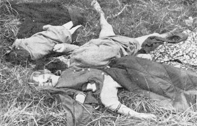 victims_of_the_vumba_massacre_1978.jpg