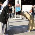Japán illemszabályok