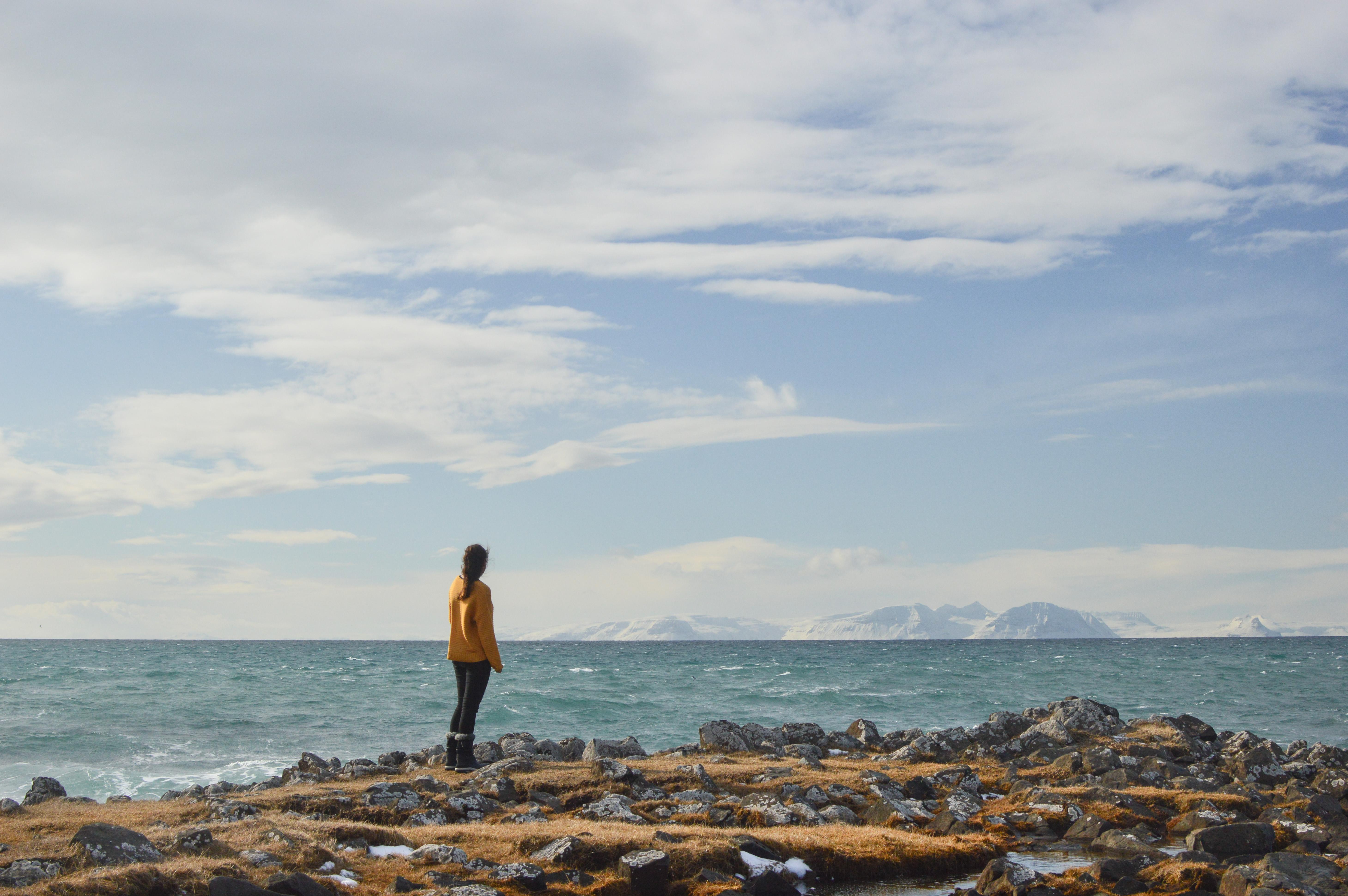 Karantén izlandi módra