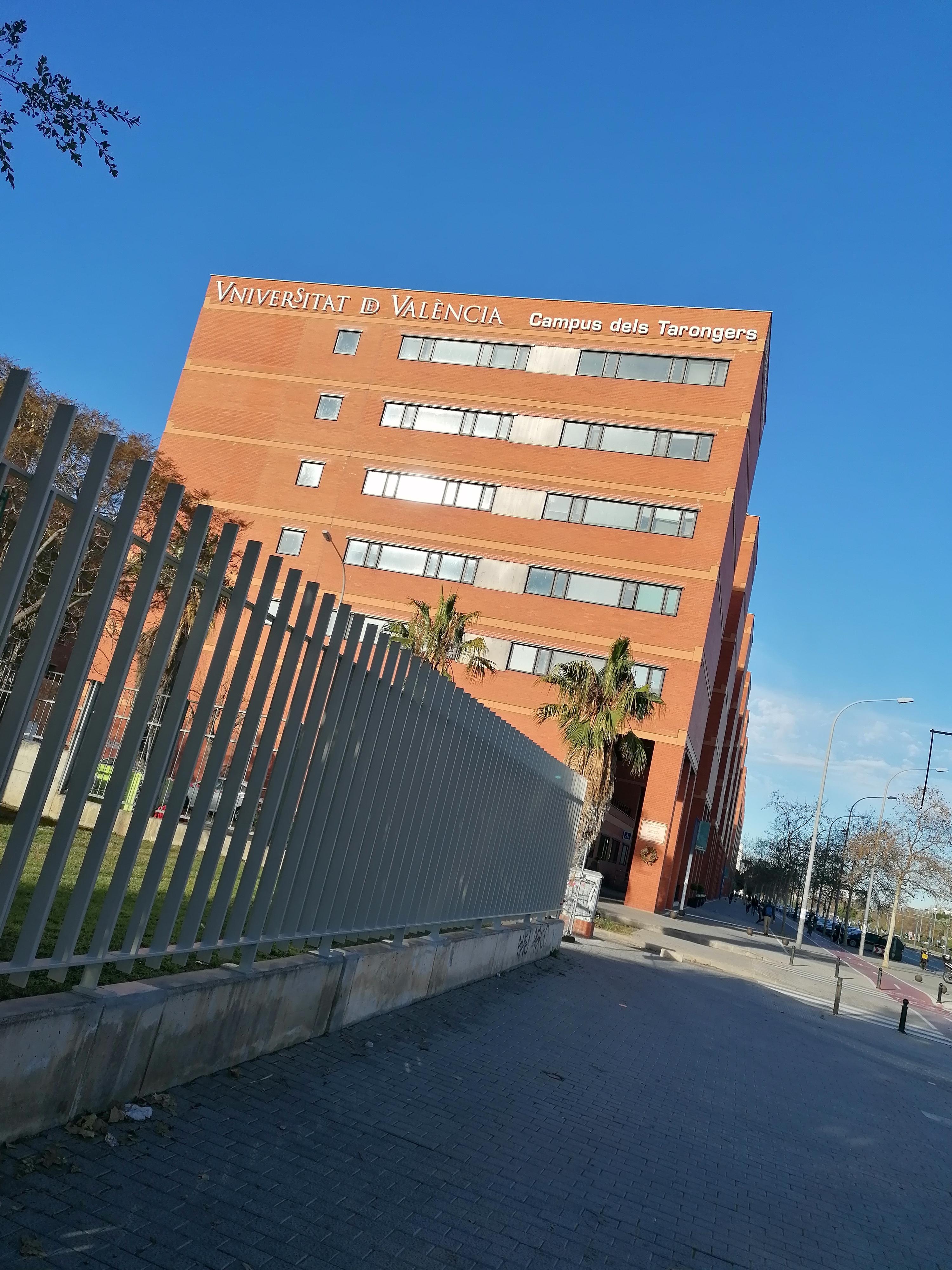 Egyetemi élet Valenciában
