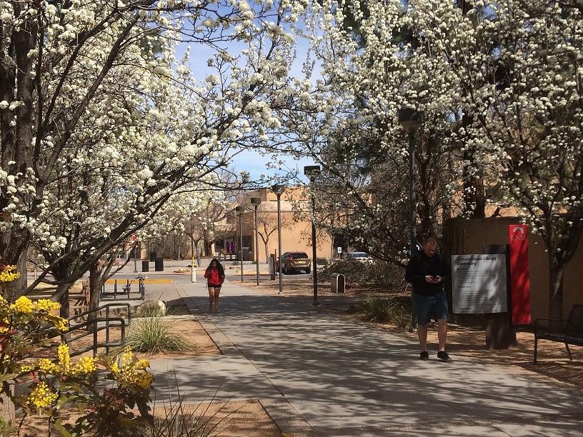 Élet a kampuszon, túlélés az órákon