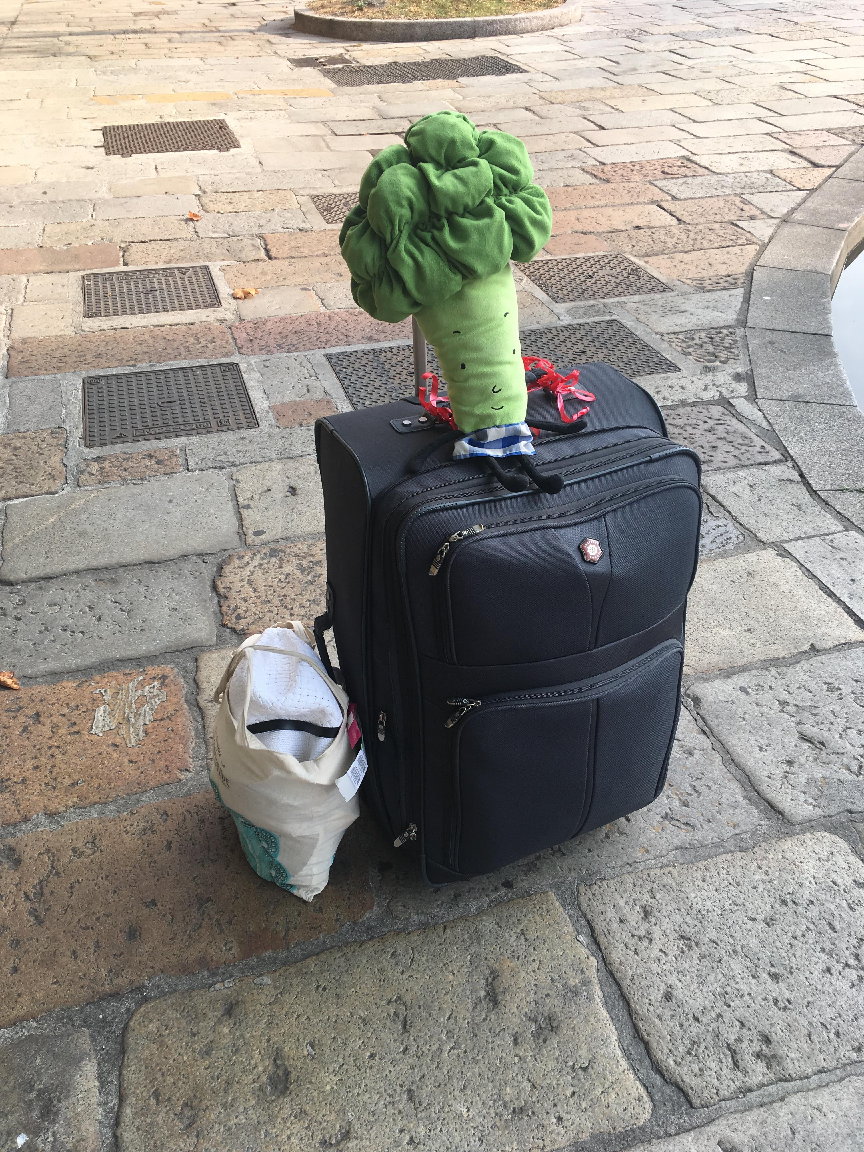 luggage_and_oszkar.jpg