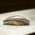 Ikedzsime - a japán halművészet mesterfogása
