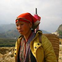 Vietnami Világevő-Mikulás Sapából