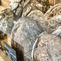 Itthon is elérhető a kedvenc párizsi kenyerem, és még egy fantasztikus kalács!