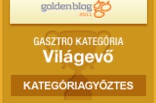 Goldenblog 2012: Szavazz rám! NE!