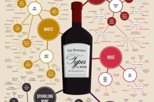 A világ borainak íztérképe
